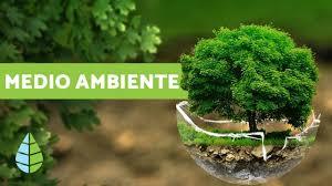 CGCOB 2020 06 05 día del medio ambiente